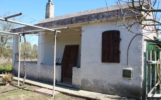 vendita immobili-terreno agricolo-Decimomannu-agenzia immobiliare-Cosmopolitan Centro Servizi Immobiliari